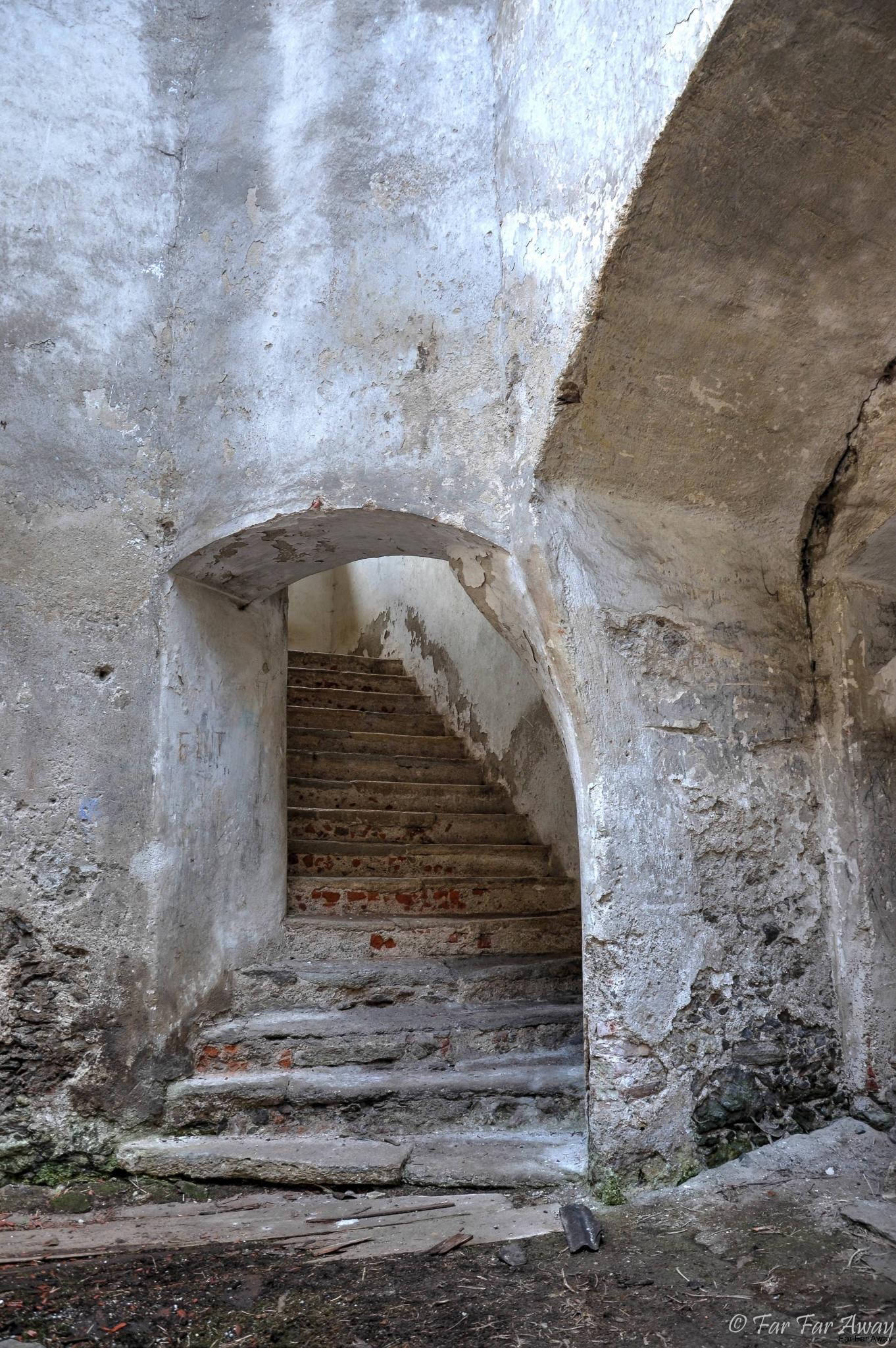Treppe-in-den-1.-Stock