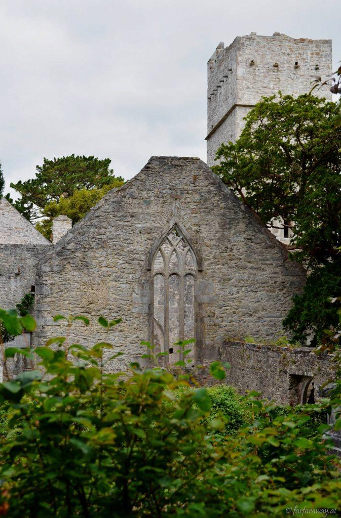 Ein erster Blick auf Muckross Abbey
