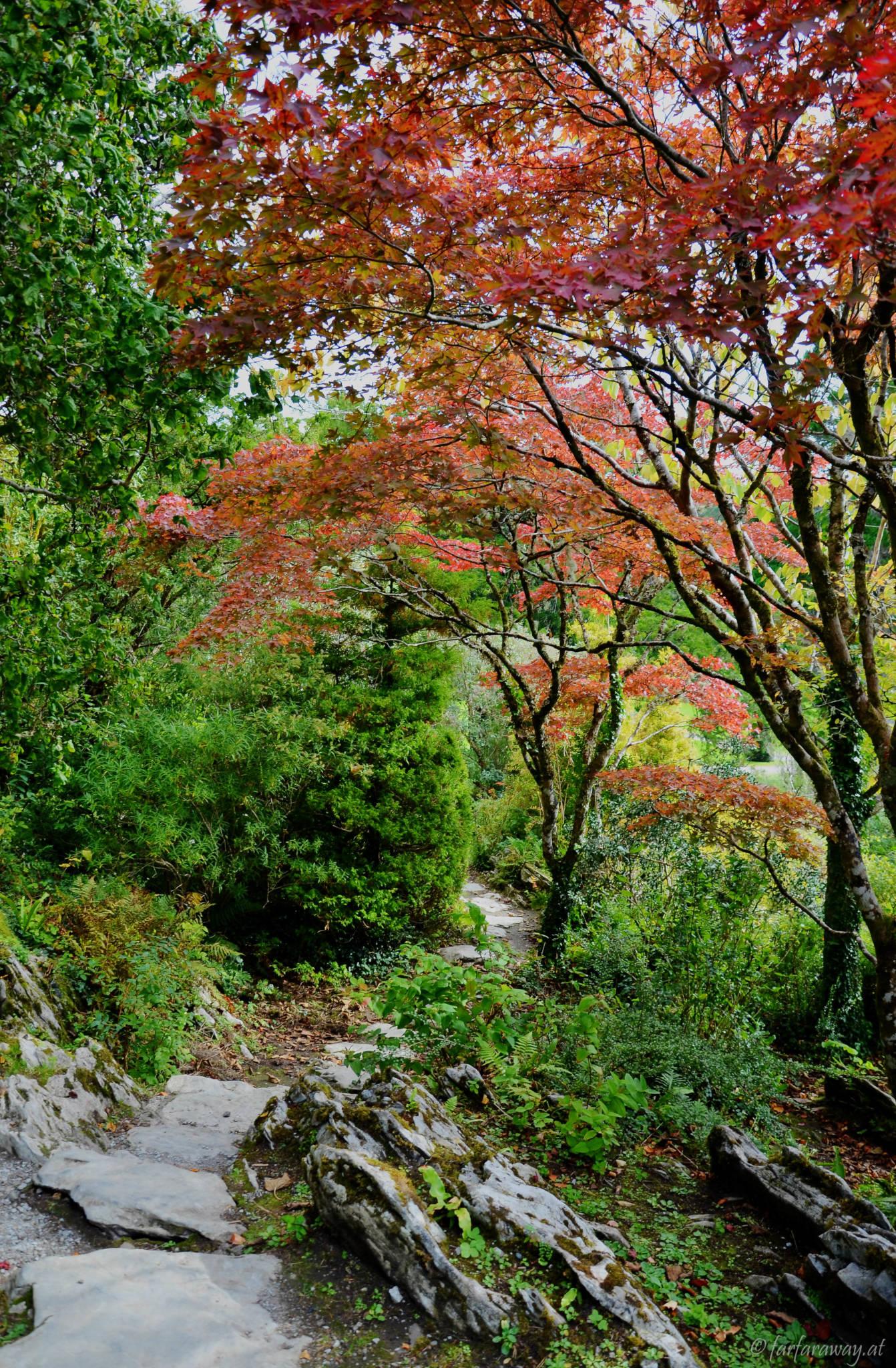 Steingarten im Garten von Muckross House