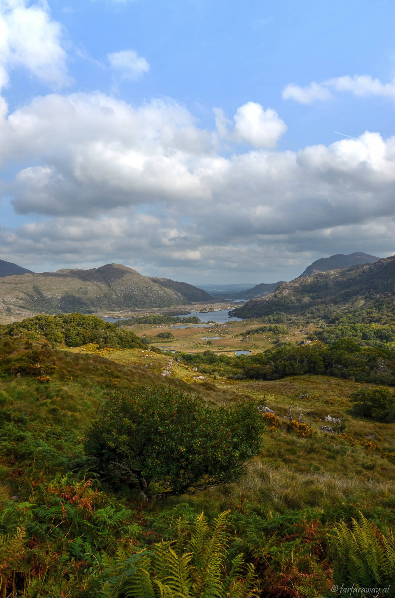 View on the Killarney National Park