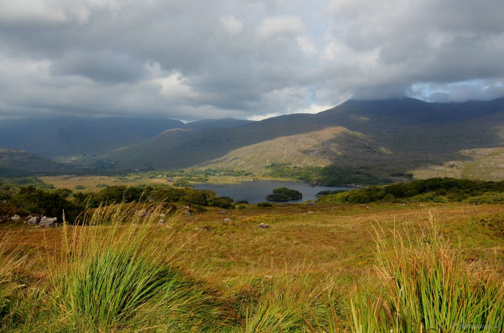 Wandern im Killarney Nationalpark