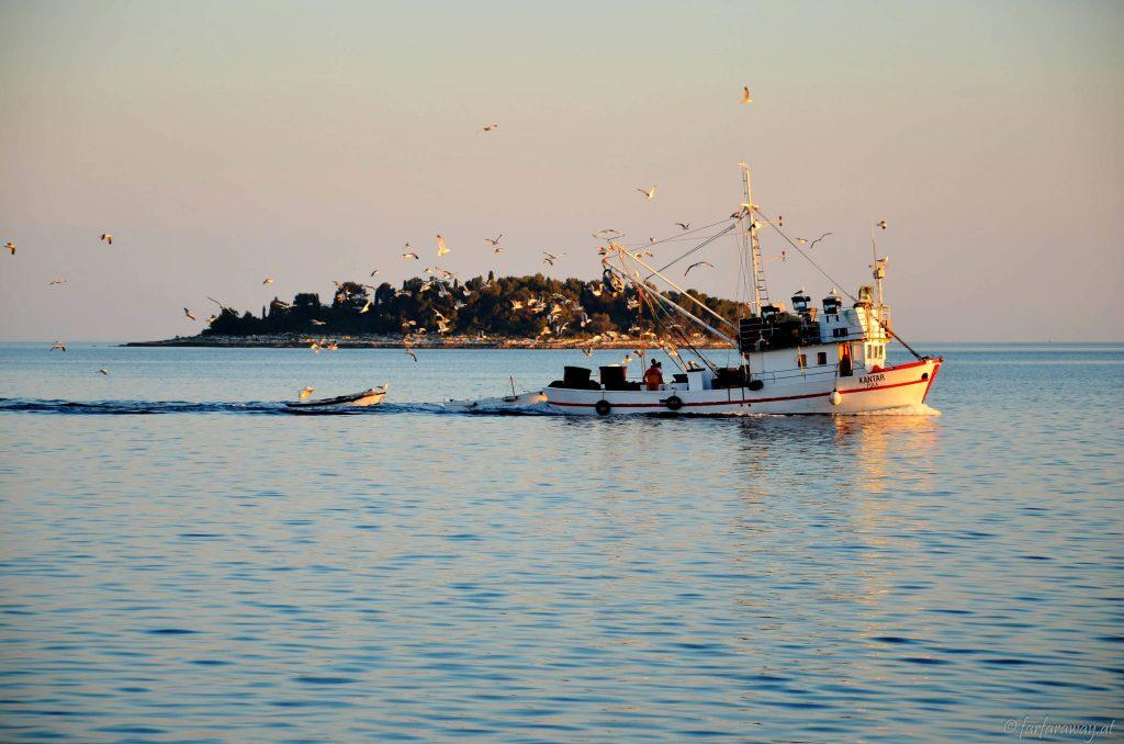 Die Fischer kommen in den Hafen