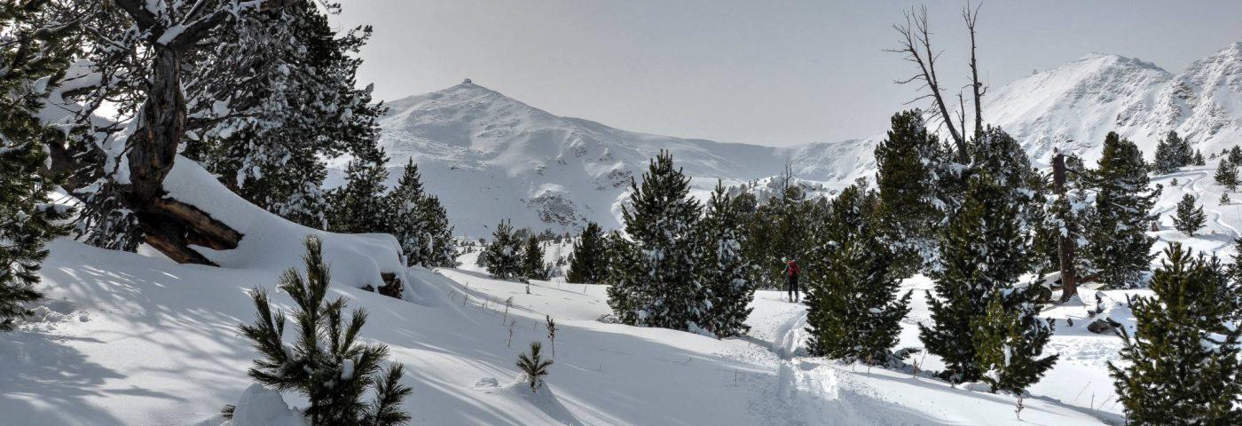 Soweit die Füße tragen –  Mit Schneeschuhen auf den Zirbitzkogel